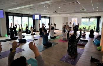 On June 23, International Day of Yoga was celebrated in Stavanger.  Here are a few impressions....
